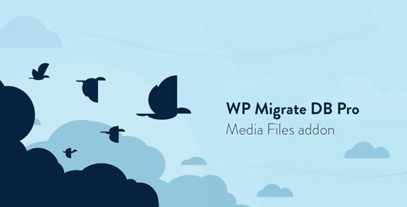 WP Migrate DB Pro - Media Files addon
