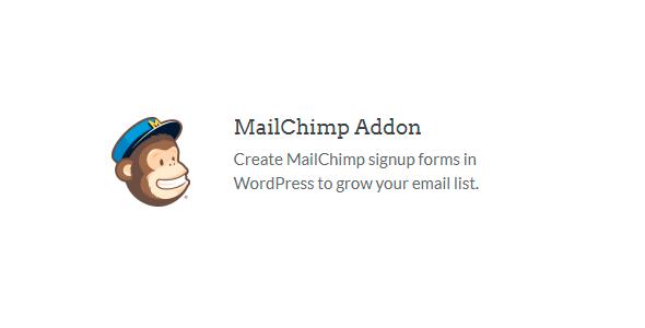 WPForms – Mailchim addon